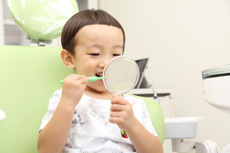 「予防歯科」に連れていきましょう