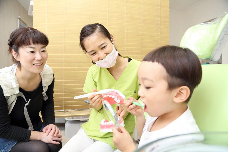 その3歯が生え始めたら「予防歯科」へ。0歳から通えます。